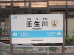 P1040064_nyuugawa.JPG