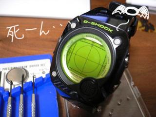 P1070312-thumbnail2.jpg